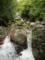 201408_屋久島復路の川