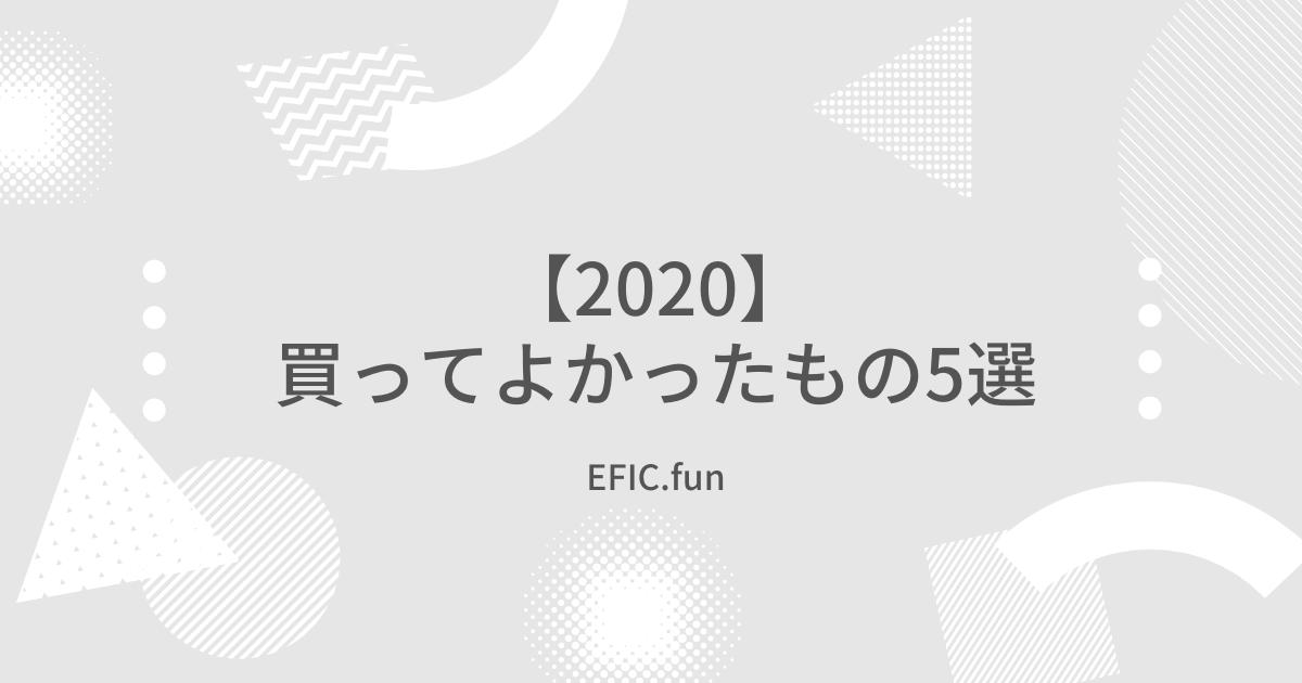 f:id:efic_fun:20210224063300p:plain
