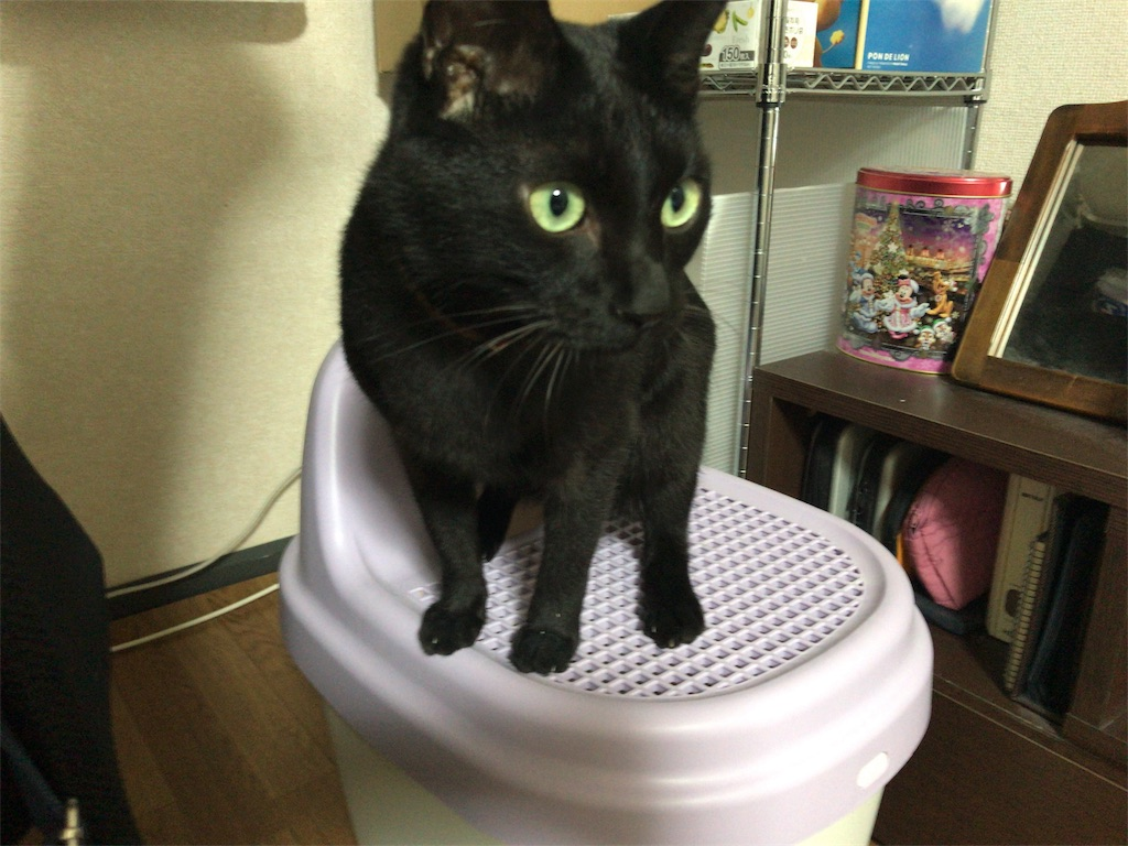 f:id:egaku:20170208020651j:image