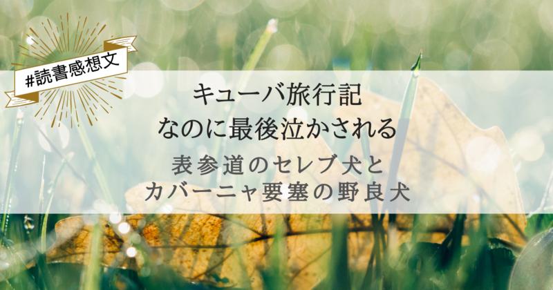 f:id:egaode_kurasu:20210127190801p:plain