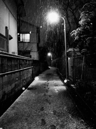 f:id:egawahiroshi:20100201202318j:image