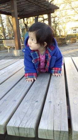 f:id:egawahiroshi:20110201163331j:image