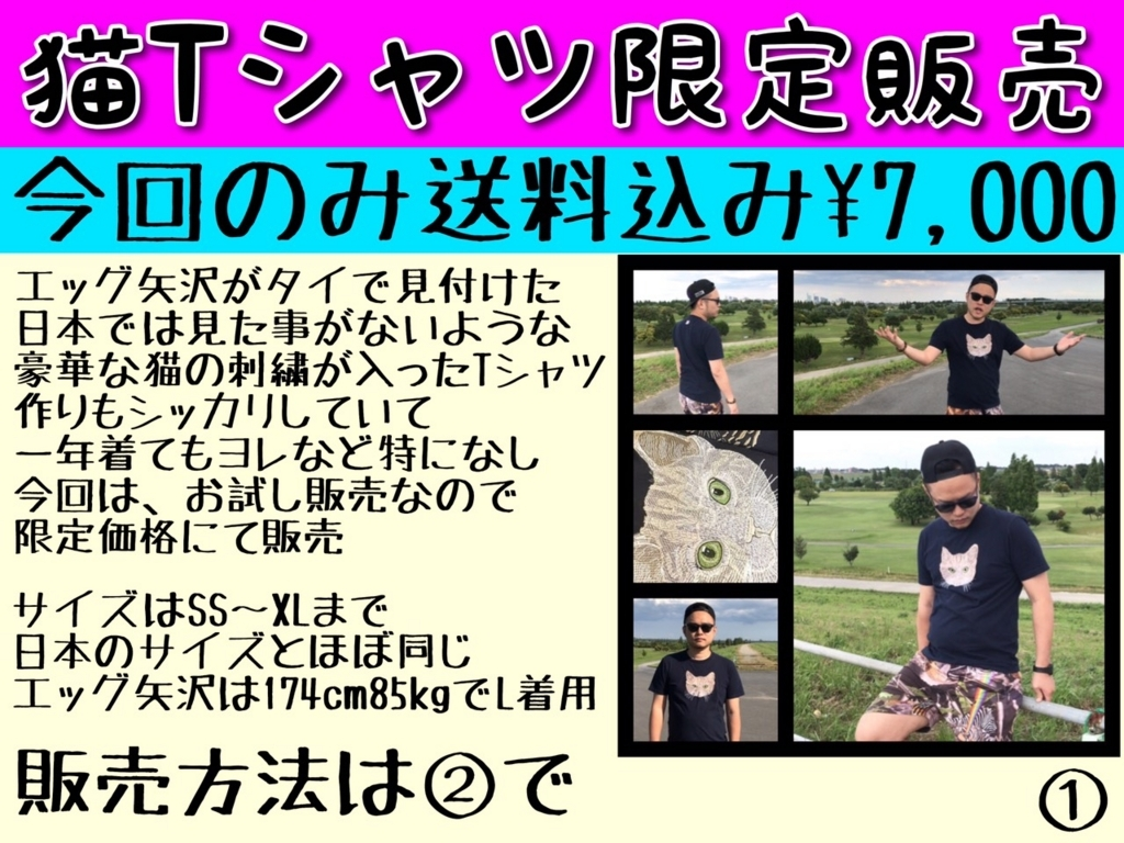 f:id:eggyazawa:20170628234340j:plain