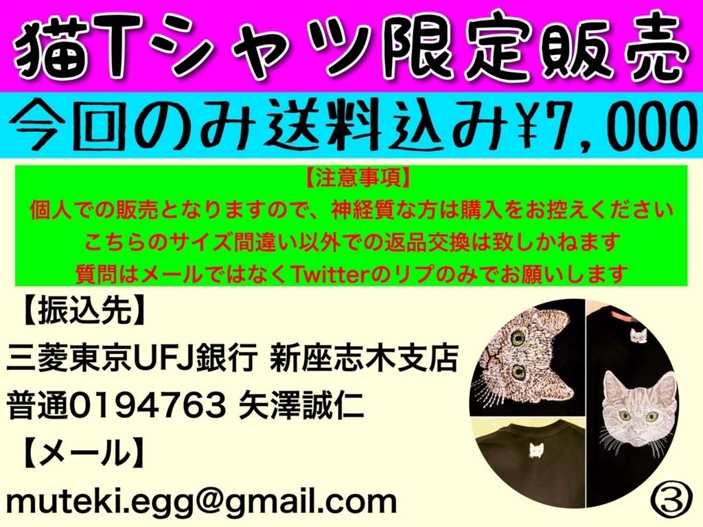 f:id:eggyazawa:20170628234454j:plain