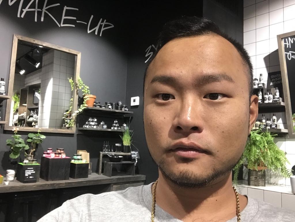 f:id:eggyazawa:20180728005415j:plain