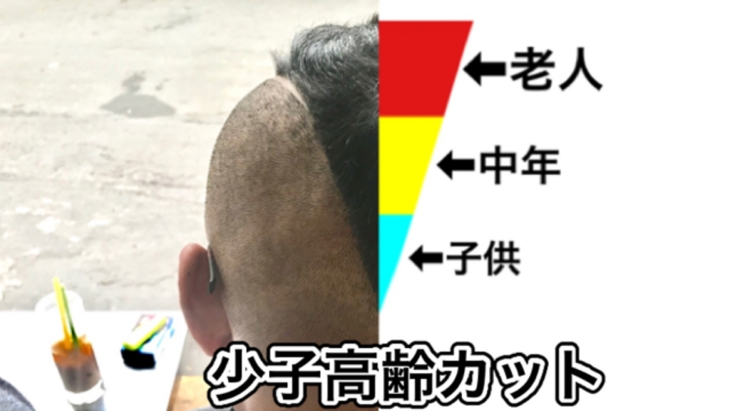 f:id:eggyazawa:20180803181103j:plain