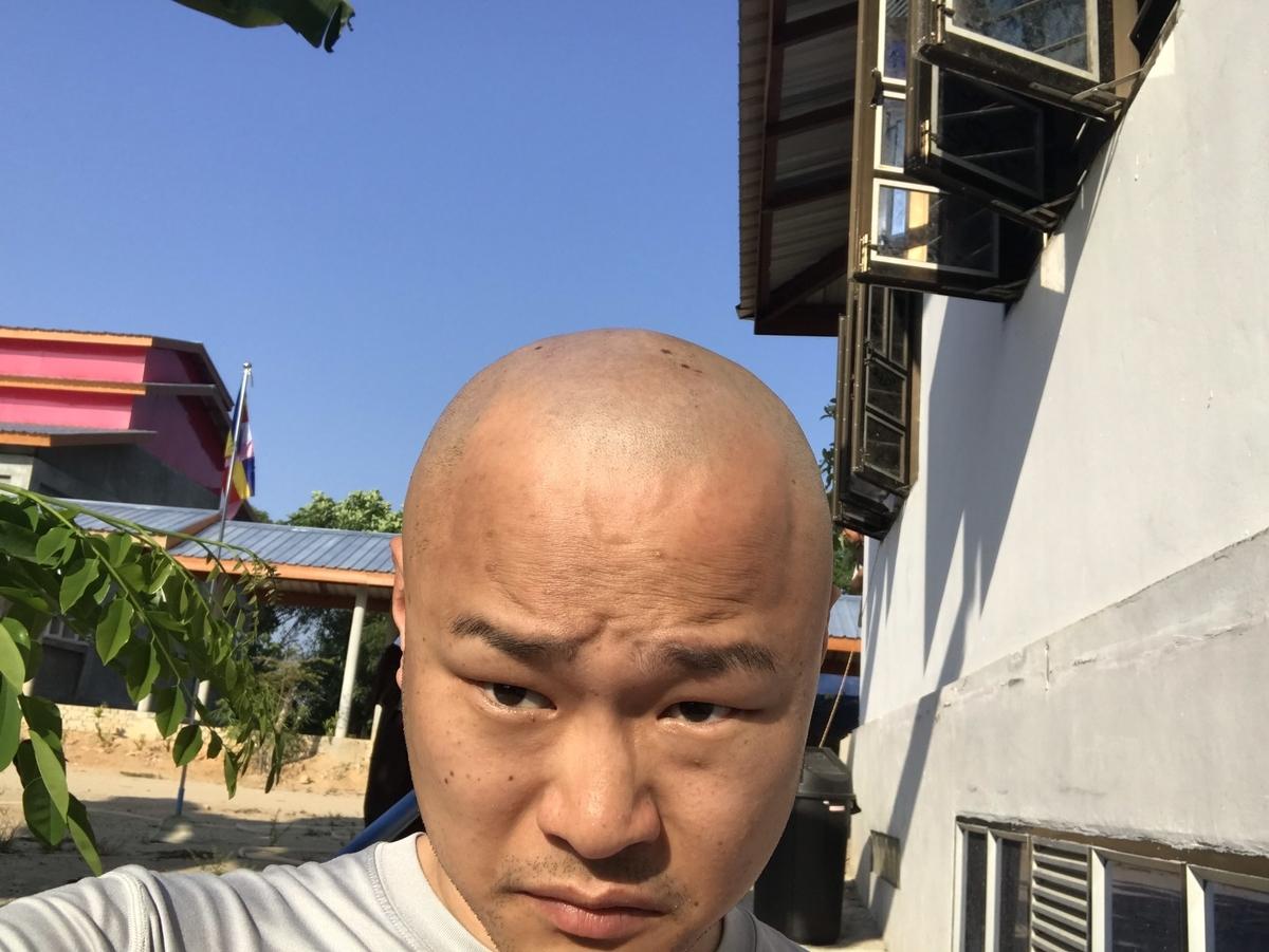 f:id:eggyazawa:20190521174703j:plain