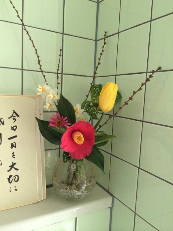 f:id:ehime-shogai:20140311110107j:image:w360:left