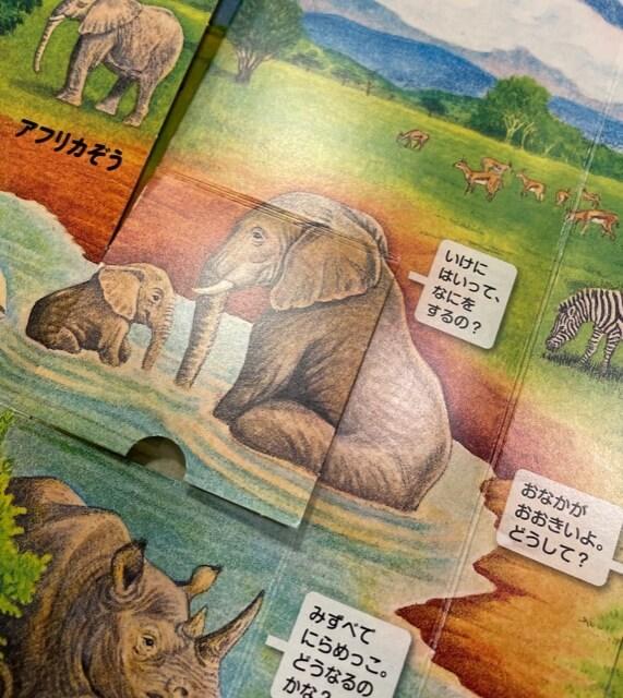 f:id:ehondaisukihinamama:20210604230402j:plain