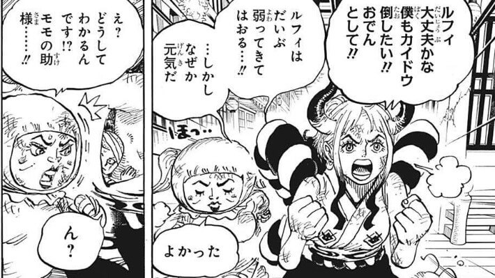 ONEPIECE1008話モモの助