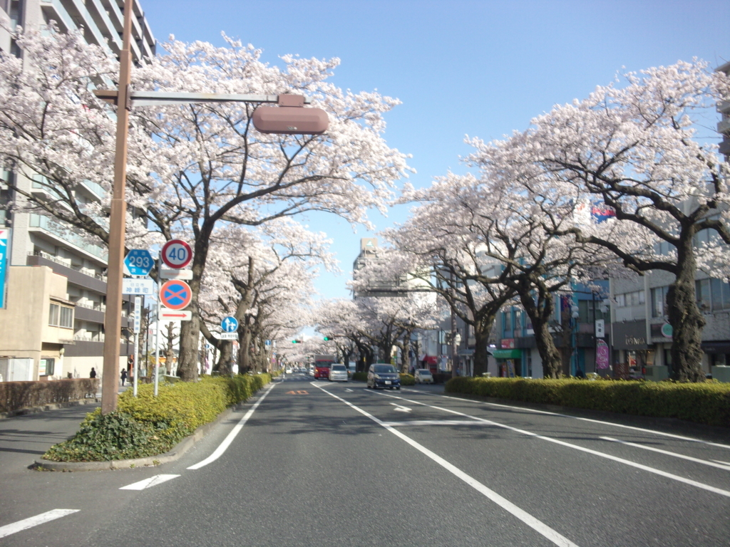 f:id:eiji-chan:20180331202250j:plain