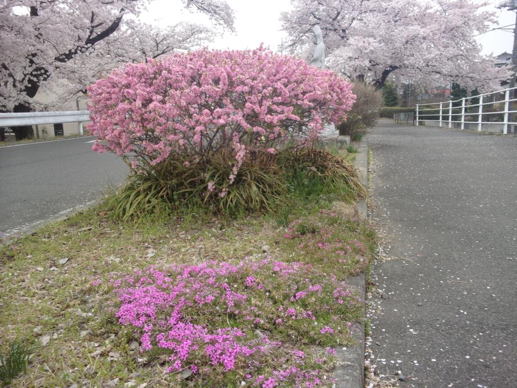 f:id:eiji-chan:20180402132037j:plain