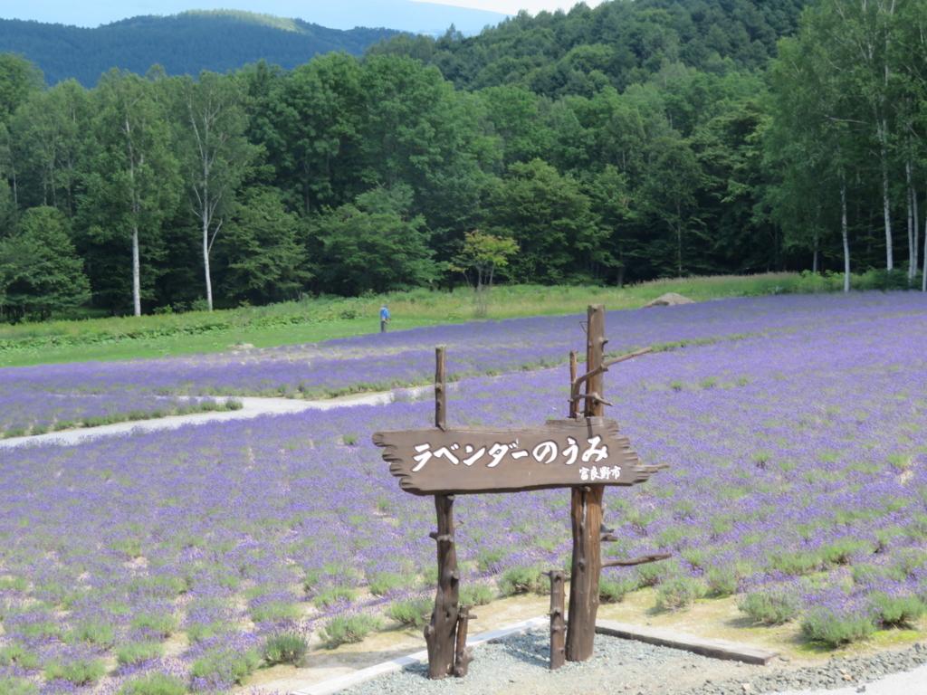 f:id:eiji-chan:20180719163523j:plain