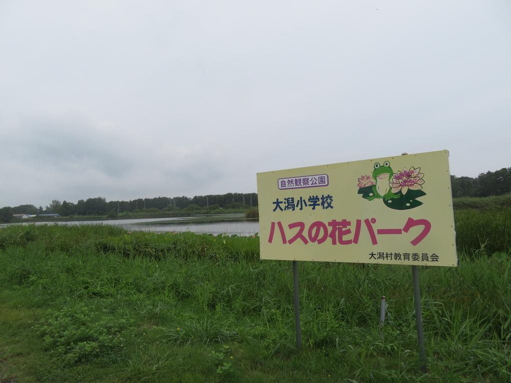 f:id:eiji-chan:20180901083959j:plain