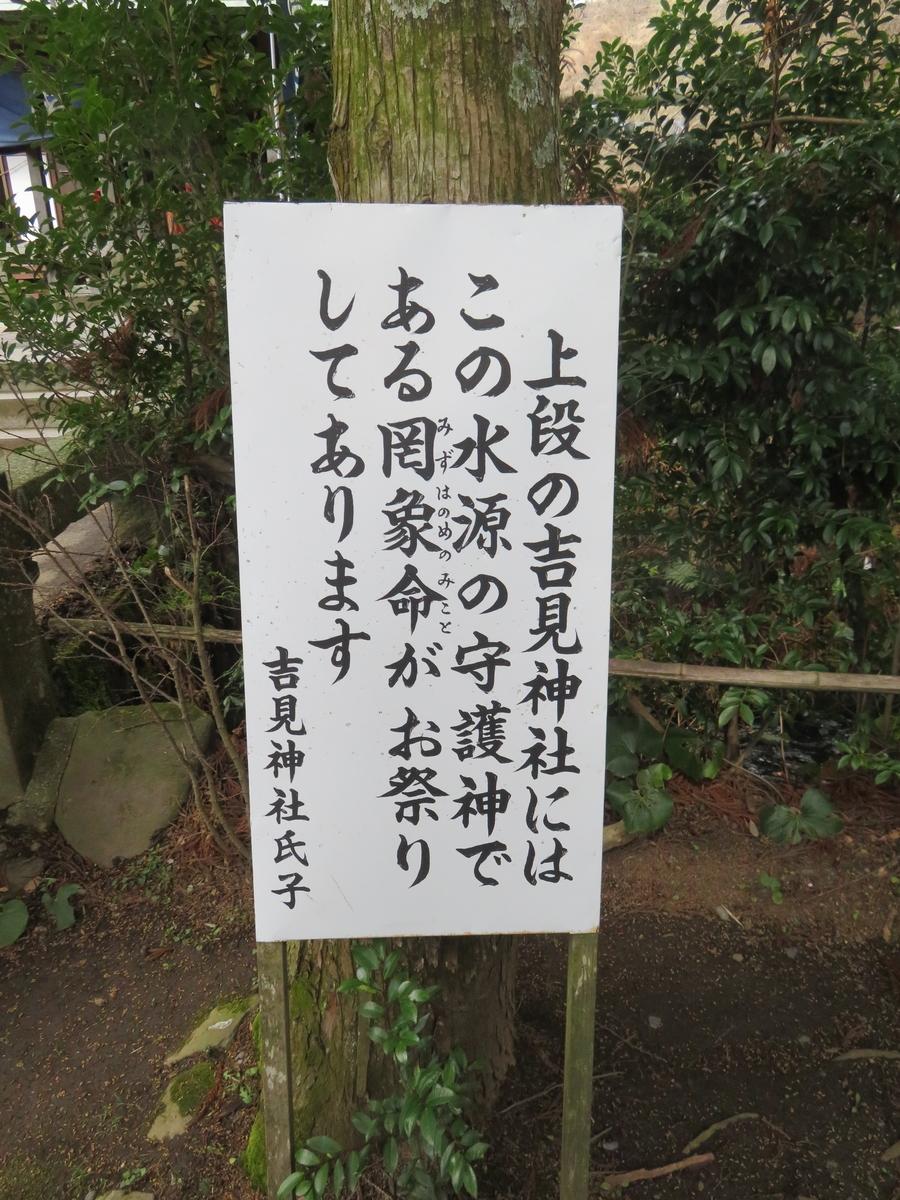 f:id:eiji-chan:20190313220136j:plain