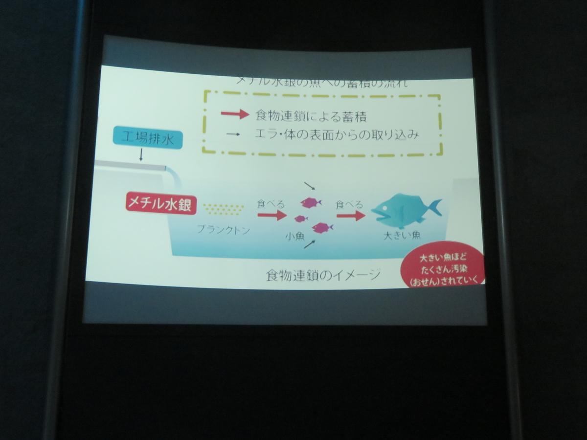 f:id:eiji-chan:20190316224948j:plain
