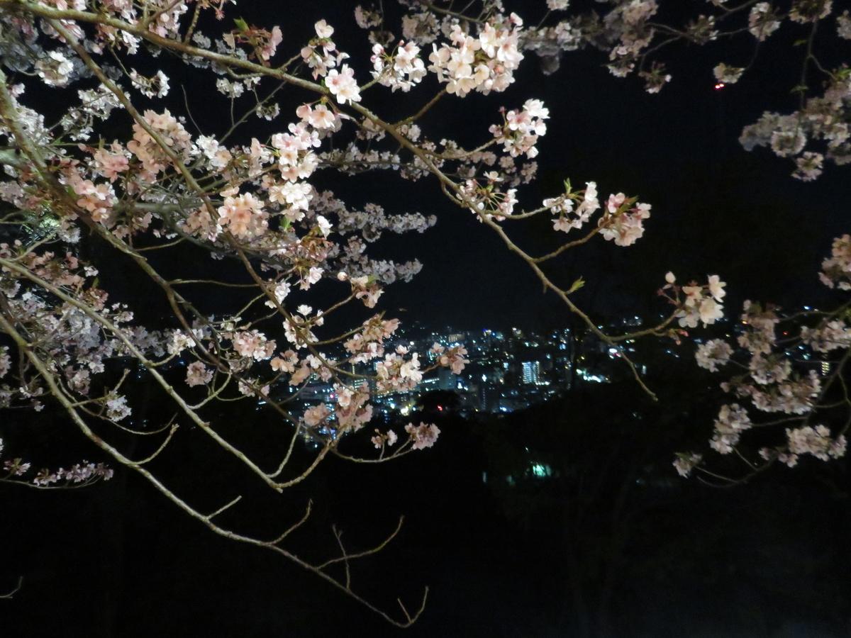 f:id:eiji-chan:20190412094537j:plain