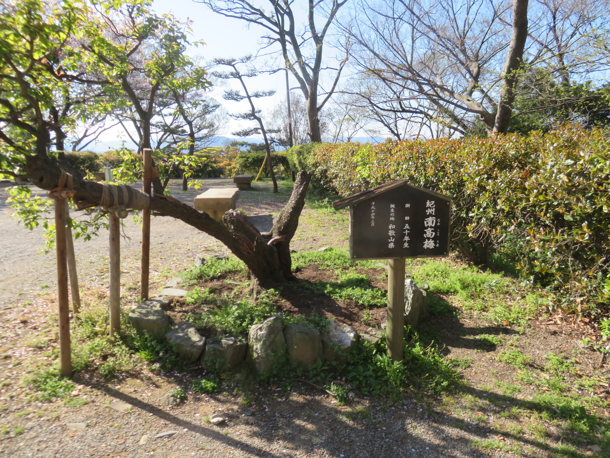 f:id:eiji-chan:20190417074013j:plain
