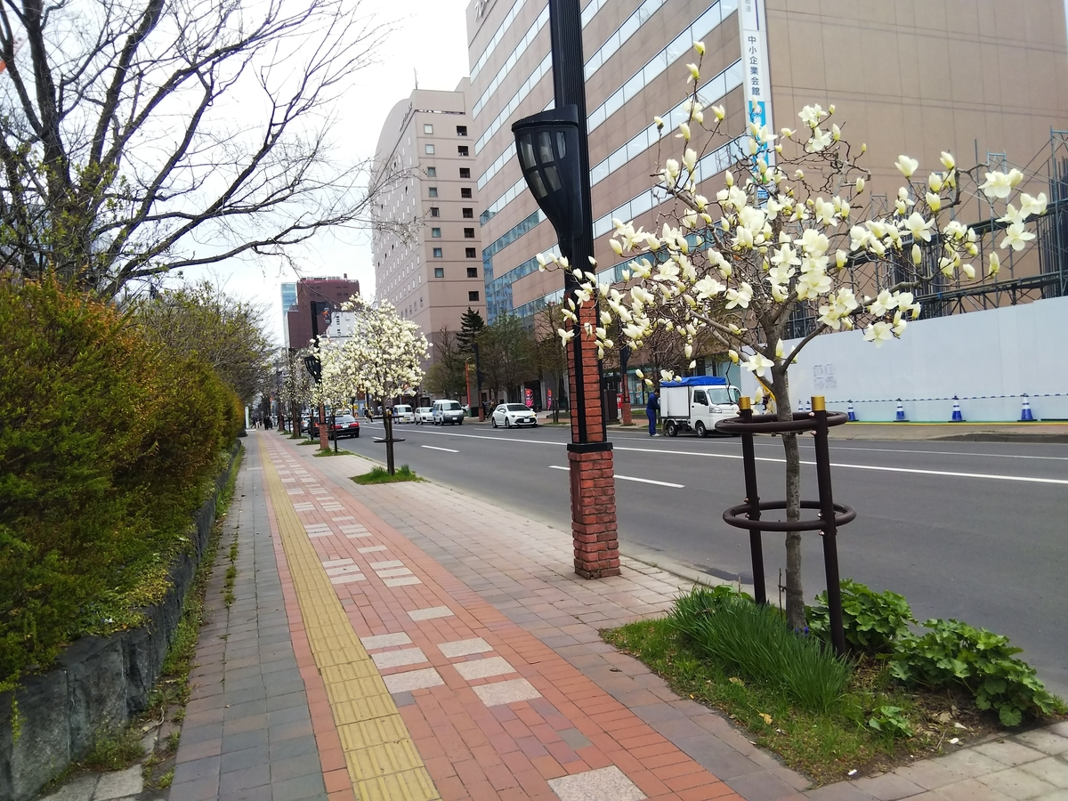 f:id:eiji-chan:20190426204942j:plain