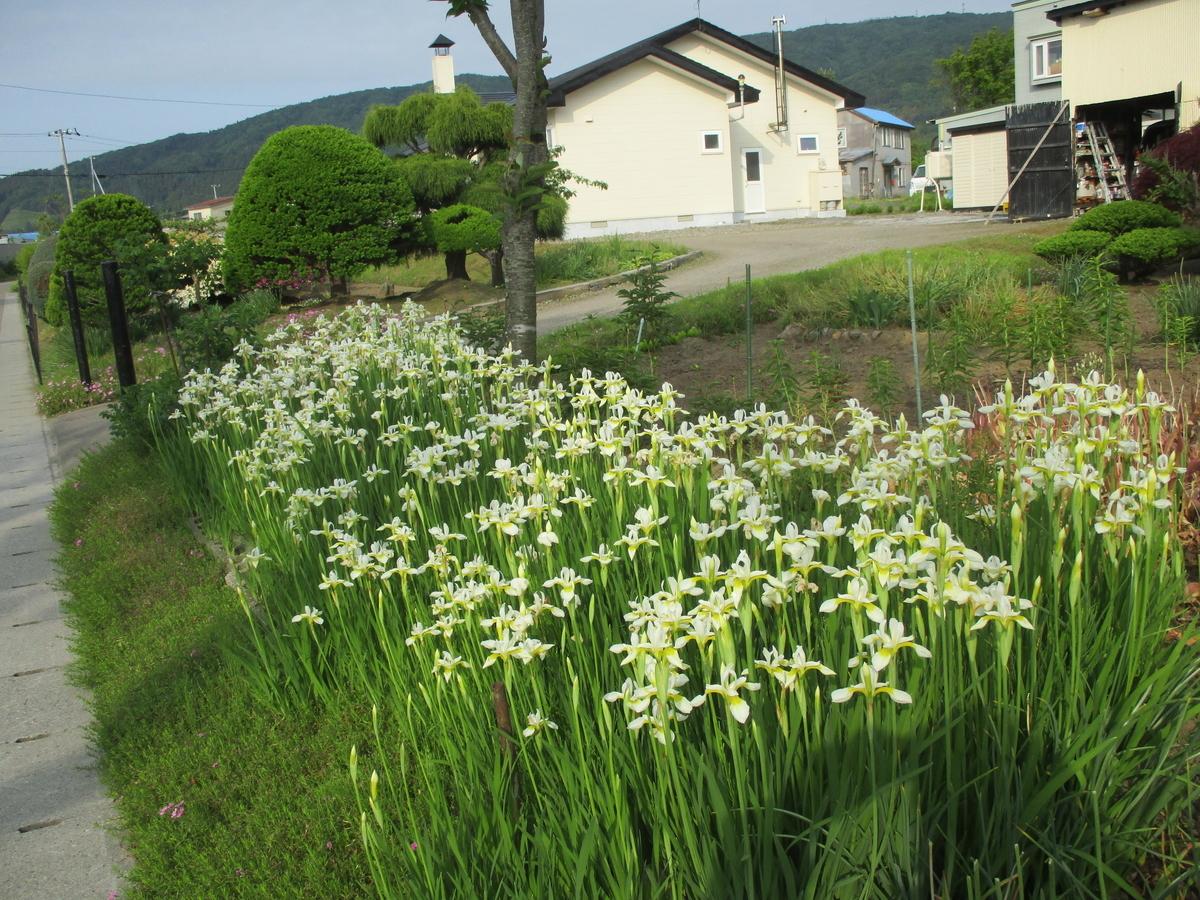 f:id:eiji-chan:20200612161422j:plain
