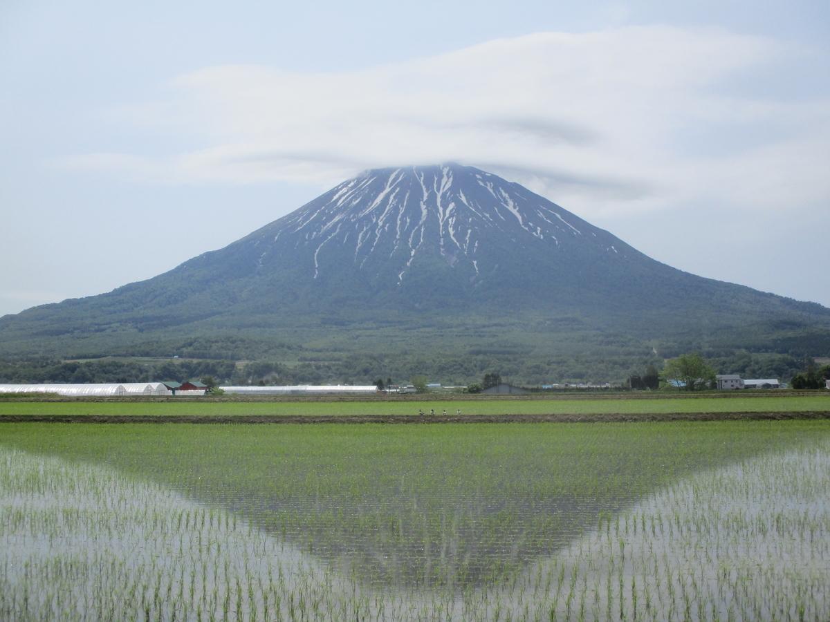 f:id:eiji-chan:20200612165655j:plain