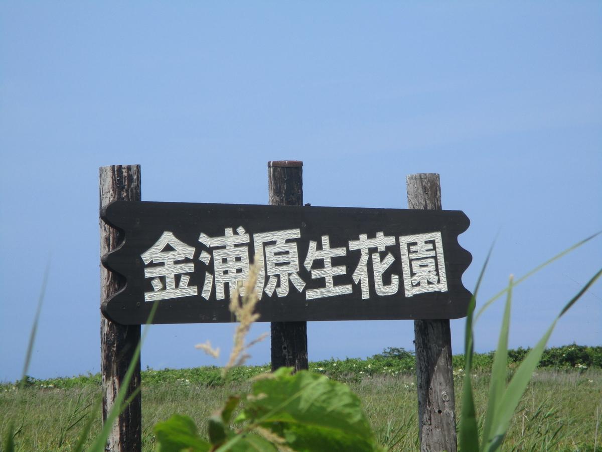 f:id:eiji-chan:20200803205600j:plain