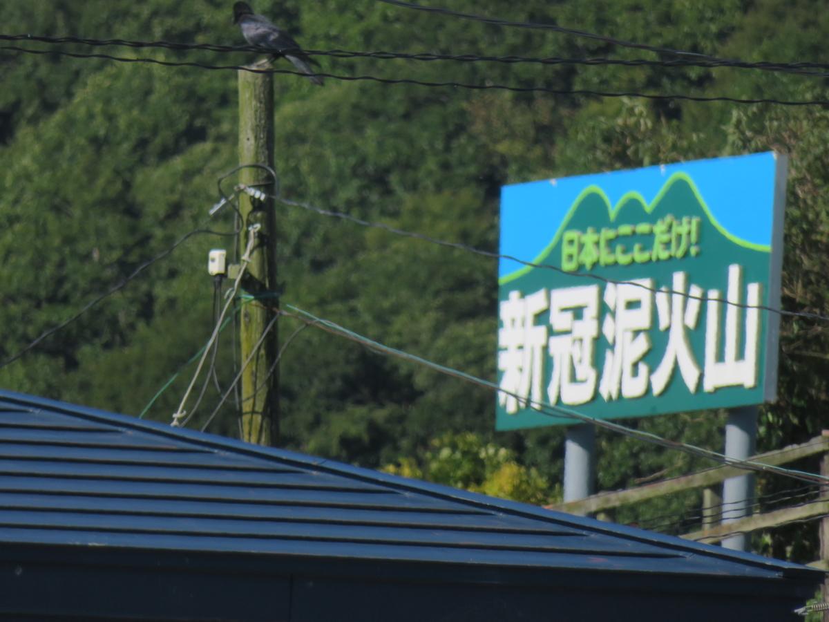 f:id:eiji-chan:20200923214427j:plain