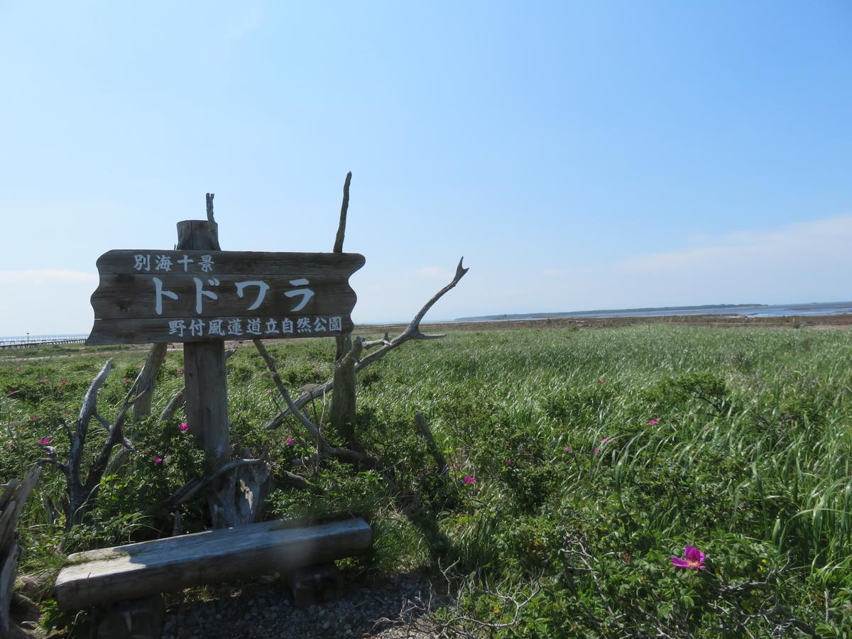 f:id:eiji-chan:20210703202436j:plain