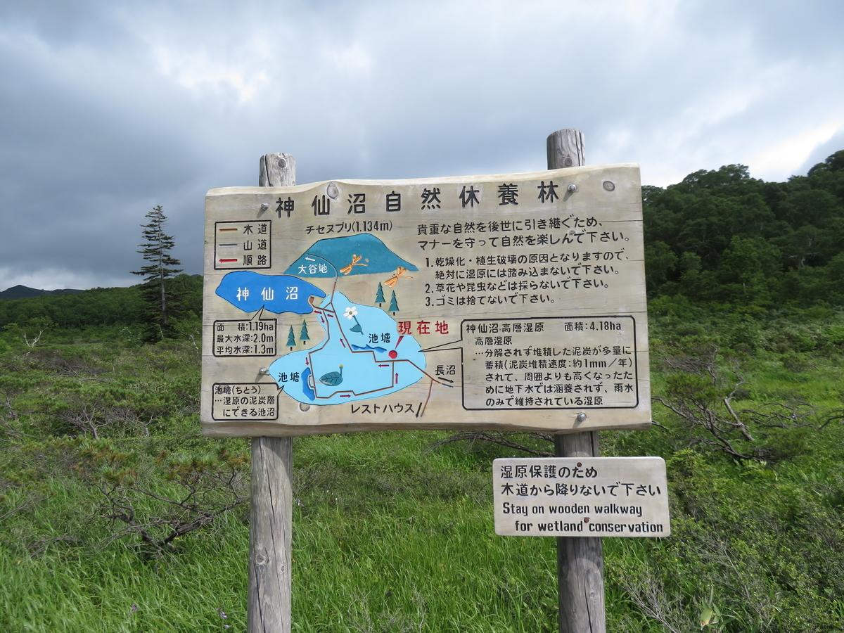 f:id:eiji-chan:20210725100405j:plain