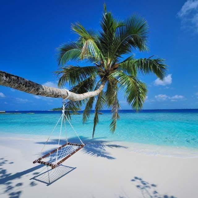 f:id:eiko-maldives:20170107003458j:plain
