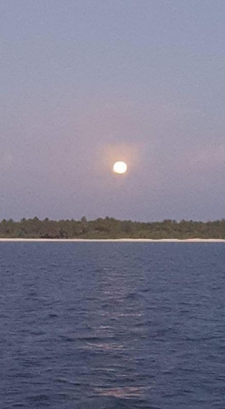 f:id:eiko-maldives:20170113005730j:plain
