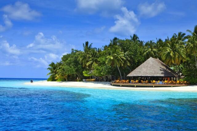 f:id:eiko-maldives:20170208012740j:image