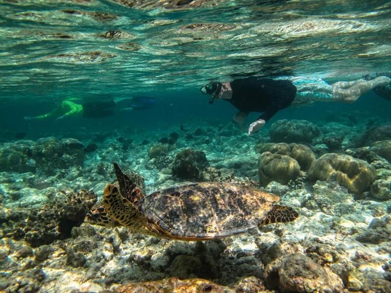 f:id:eiko-maldives:20170410012430j:plain