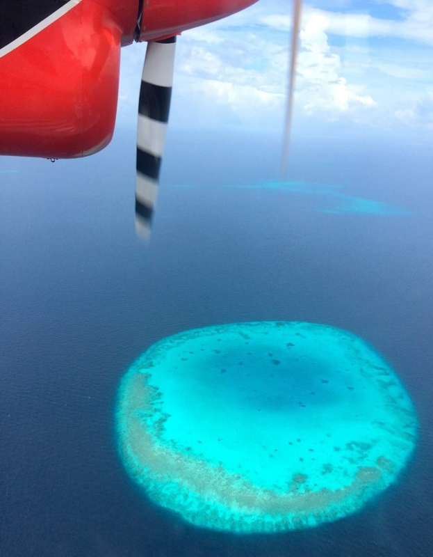 f:id:eiko-maldives:20170601004322j:plain