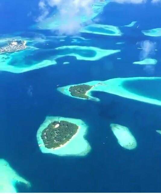 f:id:eiko-maldives:20170607155410j:image