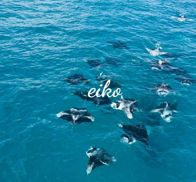 f:id:eiko-maldives:20170612012244j:plain