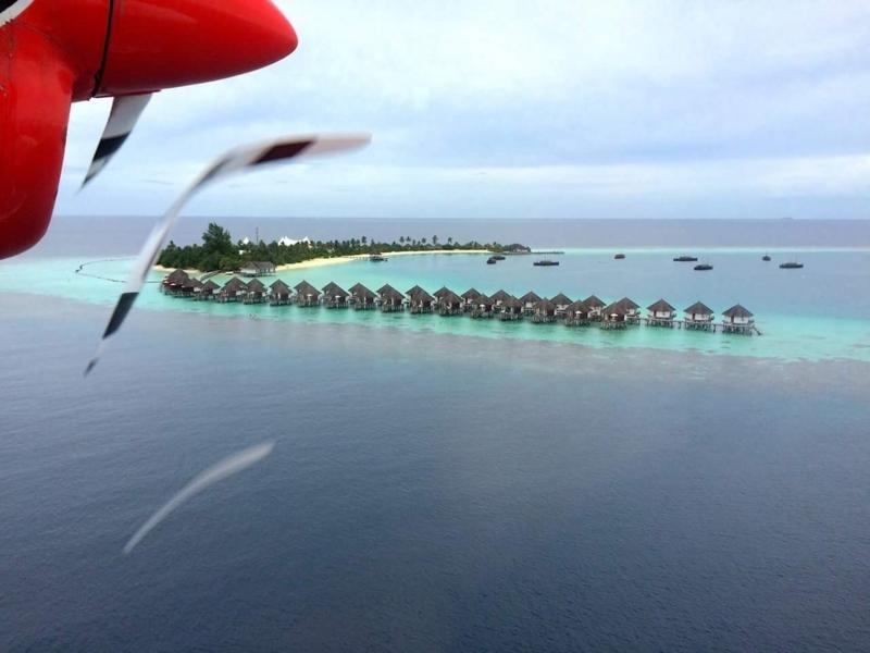 f:id:eiko-maldives:20170628014701j:plain