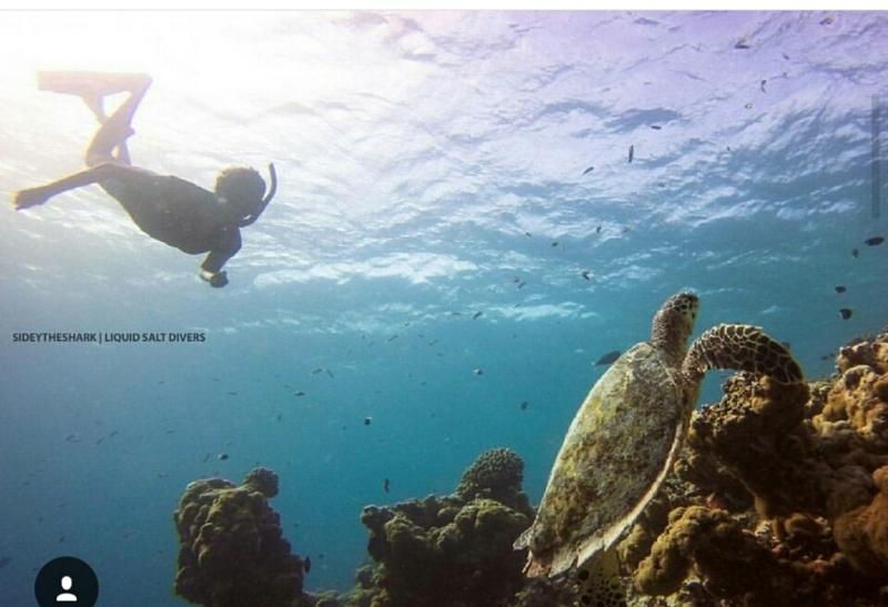f:id:eiko-maldives:20170704010212j:plain