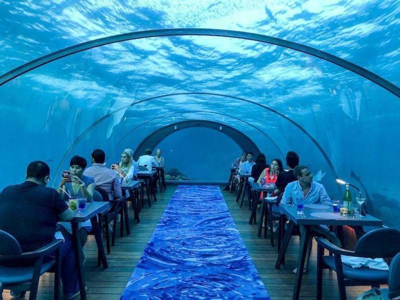 f:id:eiko-maldives:20171104011259j:plain