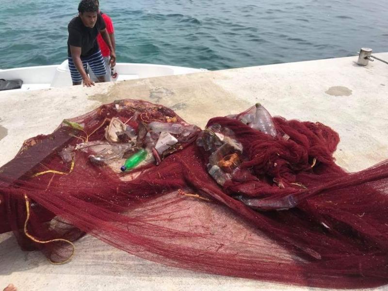 f:id:eiko-maldives:20171114010356j:plain