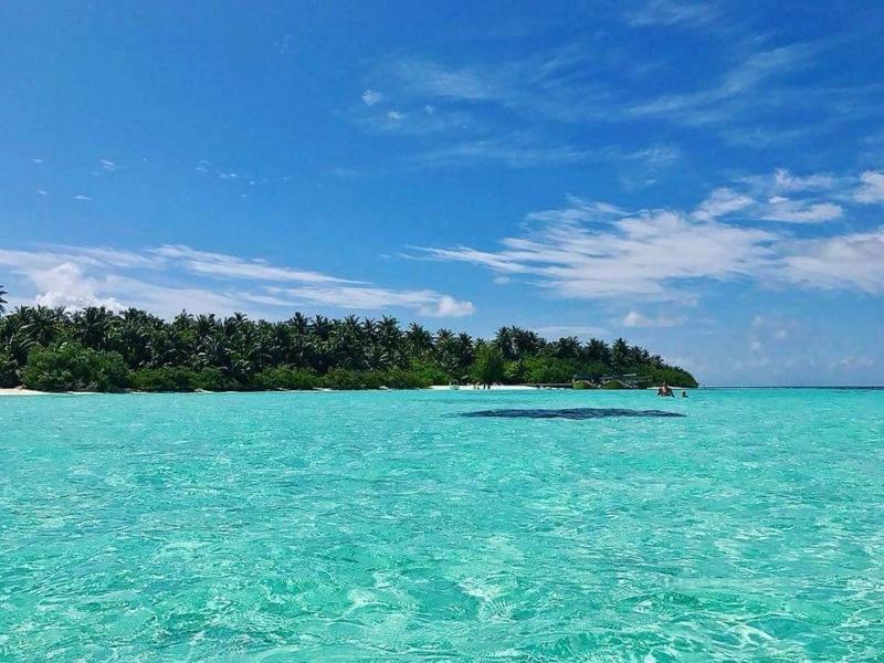 f:id:eiko-maldives:20180126002657j:plain