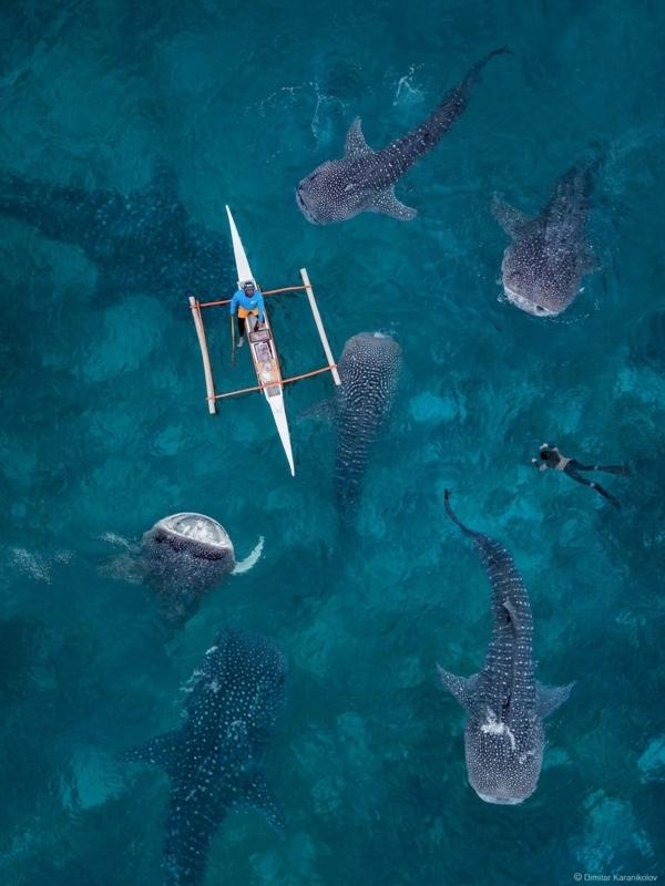 f:id:eiko-maldives:20180210002357j:plain