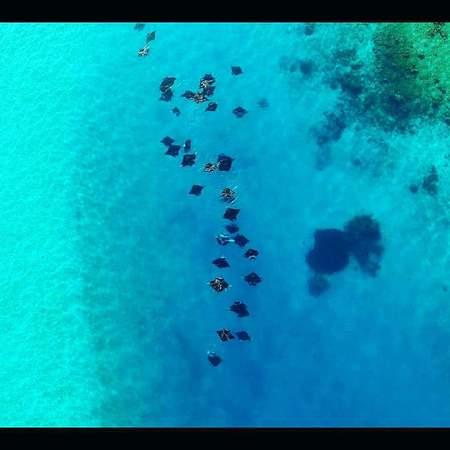 f:id:eiko-maldives:20180816020303j:plain