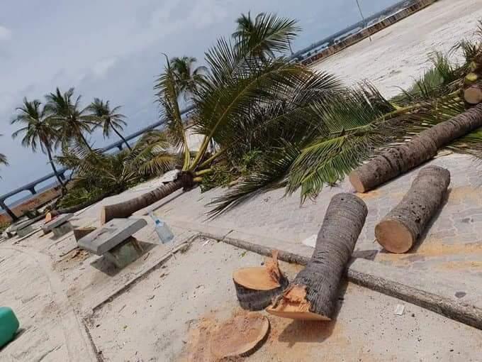 f:id:eiko-maldives:20180901011926j:plain