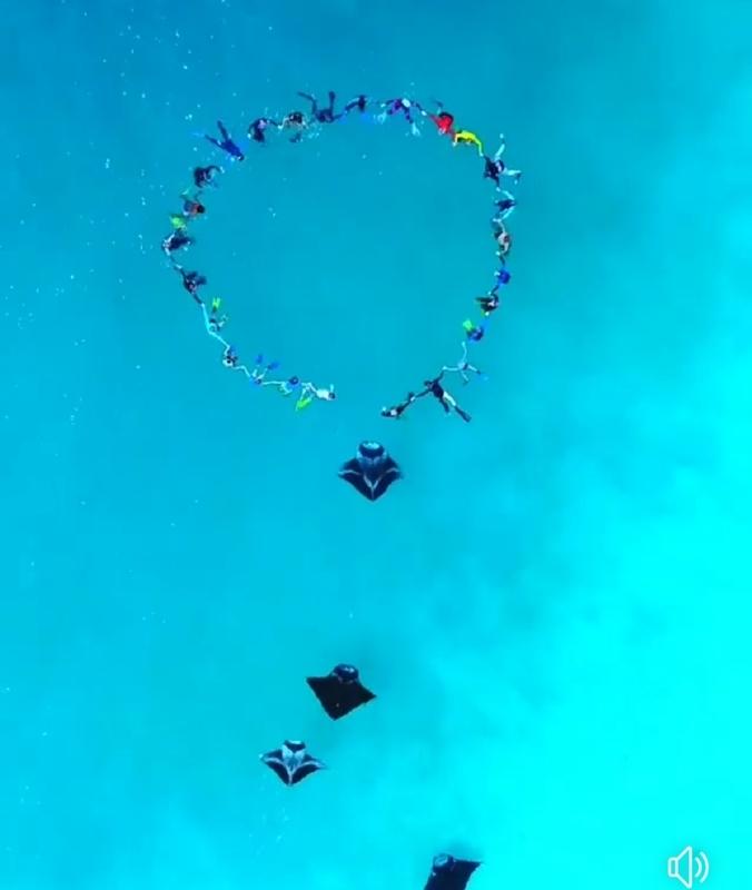 f:id:eiko-maldives:20190222014307j:plain
