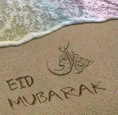 f:id:eiko-maldives:20190604031606j:image