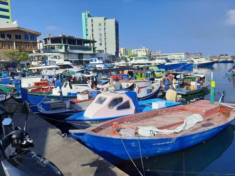 f:id:eiko-maldives:20200507012734j:plain