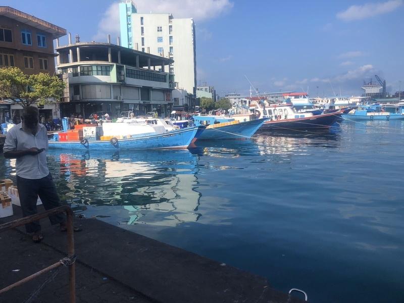 f:id:eiko-maldives:20200507012741j:plain