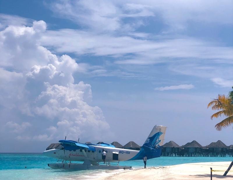 f:id:eiko-maldives:20200519010649j:plain