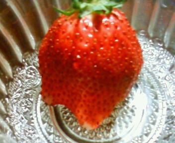 f:id:eiko19:20110203213600j:image